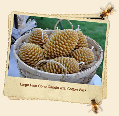 Large Pine Cone Candles