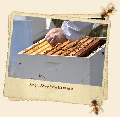 Single Tier Hive Kits