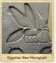 Egyptian Bee Hieroglyph