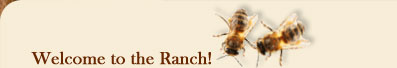 Gretchen Bee Ranch - Our Story